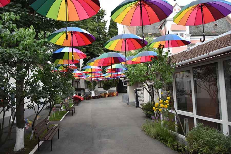 , Prima alee cu umbrele plutitoare din Deva se află în curtea bibliotecii județene