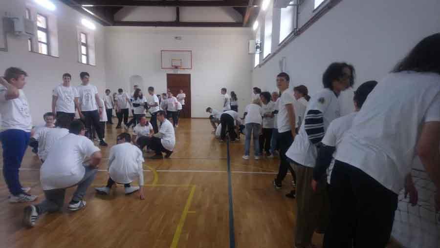"""Tineri cu Sindrom Down, angrenați într-un proiect de suflet """"Bravi&Leo"""", oraganizat la Colegiul Național """"Decebal"""""""