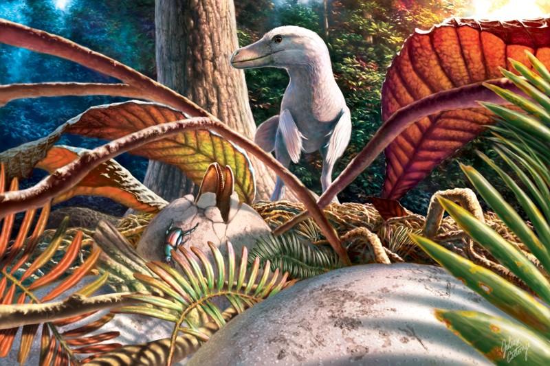 O nouă enigmă a dinozaurilor, elucidată de paleontologi